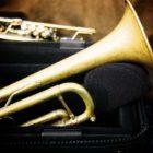 Trombone Cases